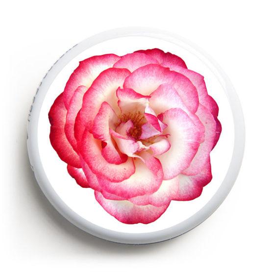 FS-129---Rose